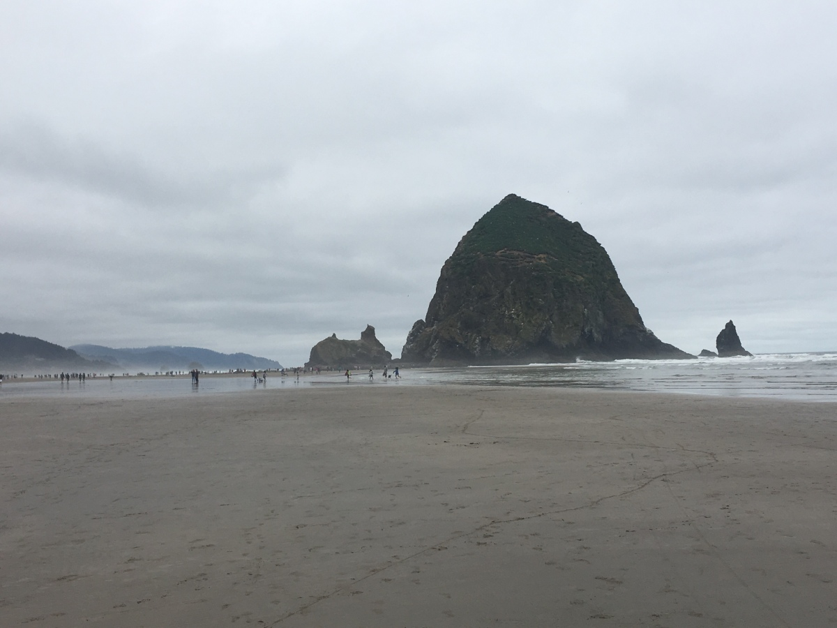 Enjoying the wind, waves and wildlife at Cannon Beach, OR